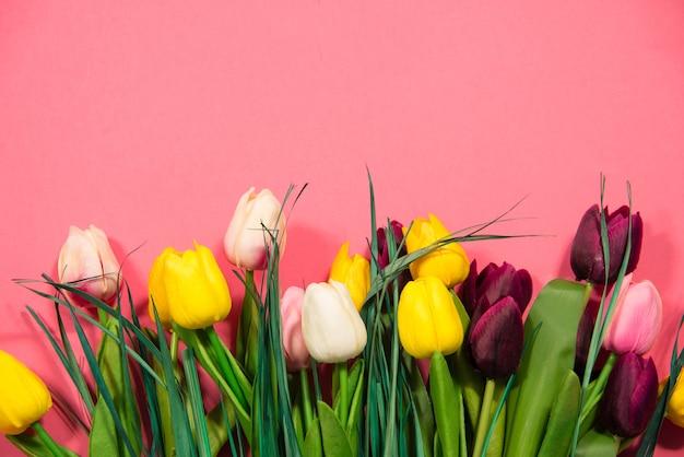 복사 공간와 분홍색 배경에 튤립입니다. 봄