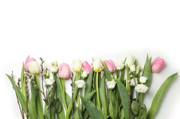Тюльпаны, розы и сережки ивы, изолированные на белом фоне