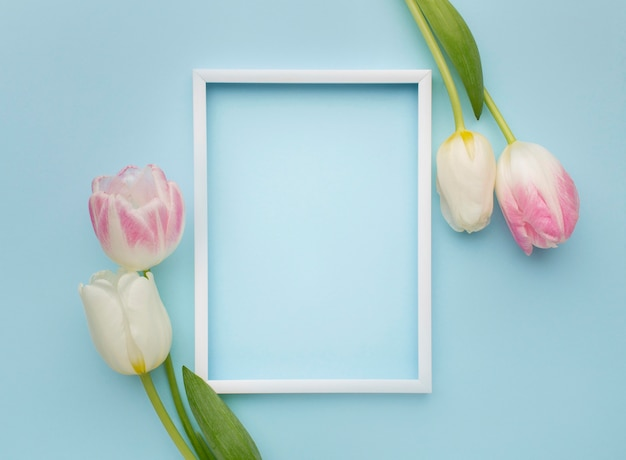 Tulips with frame beside