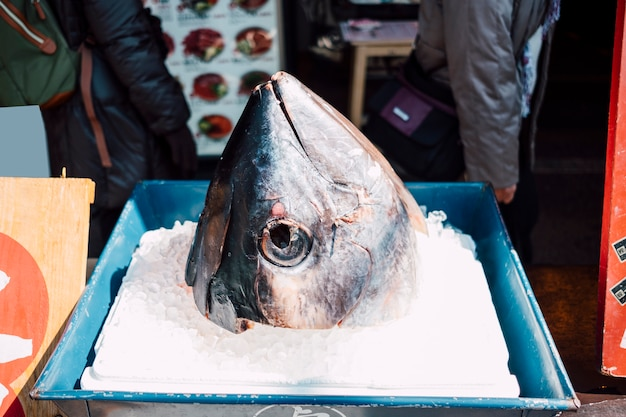 Tuna head in fish market