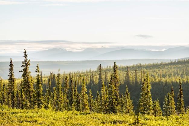 カナダの北極圏の上のツンドラの風景。