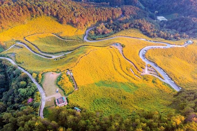 タイのメーホンソン県にあるtungbuatongメキシコのヒマワリ畑。
