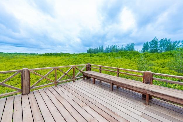 タイのラヨーン河口プラセにあるtung prong thongまたはgolden mangrove fieldのマングローブ