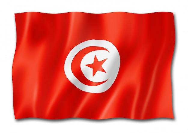 分離されたチュニジアの旗