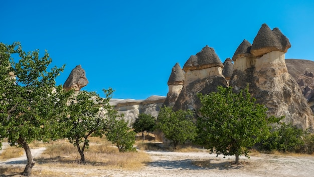 Turkey landscape fairy chimneys near cavusin town at  goreme cappadocia turkey travel tourism and landmark - the three beauties at urgup
