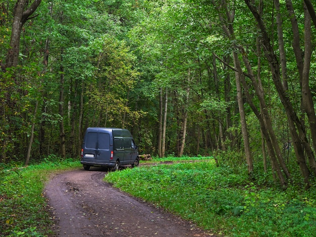 美しい林道をオンにします。トラックが緑の森の道を曲がります。