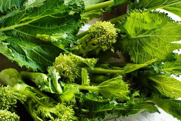 カブの葉野菜、イタリアのcime di rape