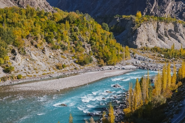 Turquoise ghizer river flowing through forest in gahkuch, surrounded by mountains. gilgit baltistan, pakistan.