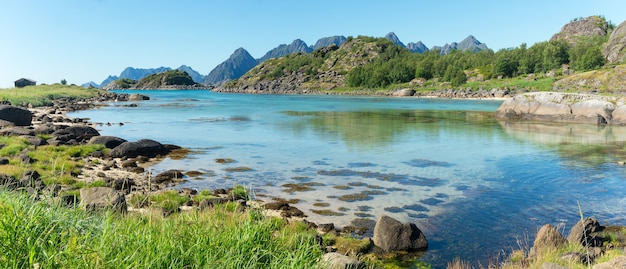 The turquoise water of the bay, the stones and the green grass in summer, arsteinen island, lofoten archipelago, norway