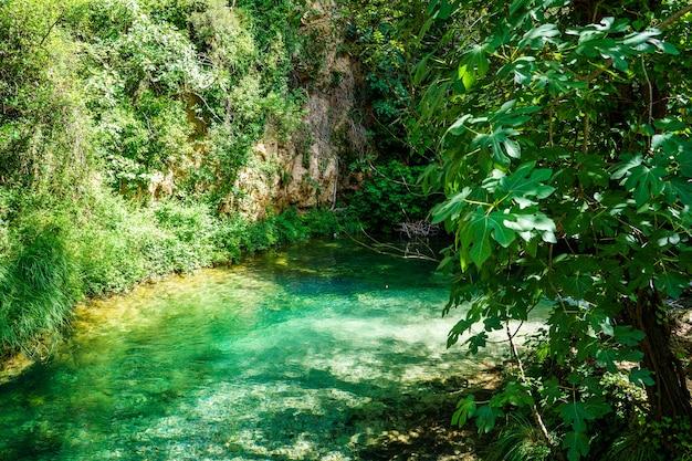 岩層と緑の木々や茂みに囲まれた小さな川からのターコイズブルーの水。セニア川