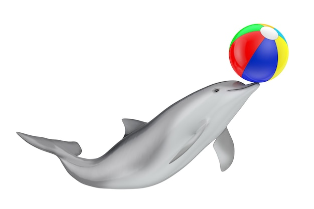 Tursiops truncatus ocean or sea bottlenose dolphin with colorful beach ball on a white background. 3d rendering