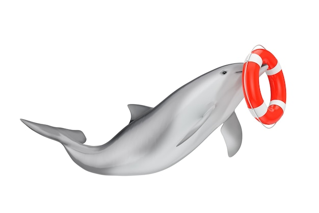 Tursiops truncatus ocean or sea bottlenose dolphin with life buoy on a white background. 3d rendering