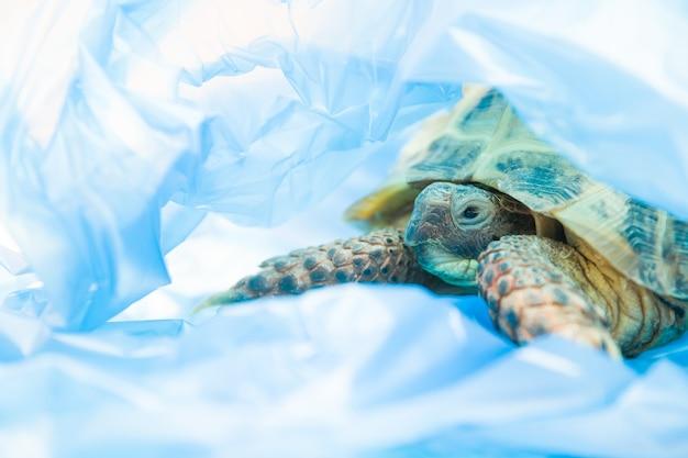 행성 개념의 파란색 비닐 봉투 오염에 거북이