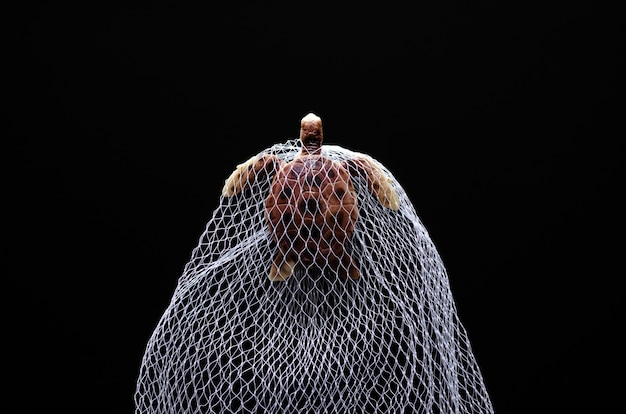 A turtle toy model trapped in white net on black background
