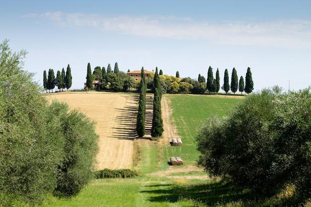 투스카니 언덕 풍경, 이탈리아. 시골 이탈리아 파노라마.