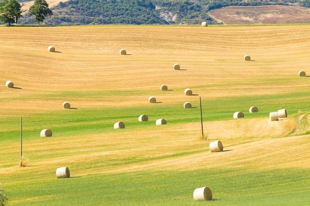 투스카니 언덕 풍경, 이탈리아입니다. 시골 이탈리아 파노라마입니다.