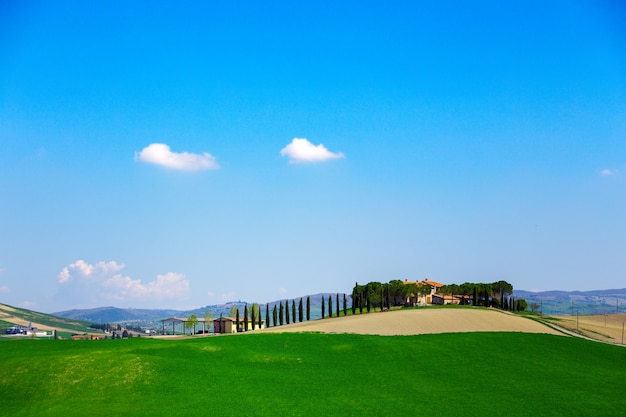 晴れた日に古い家と糸杉のあるトスカーナの風景。シエナ県。イタリア、トスカーナ