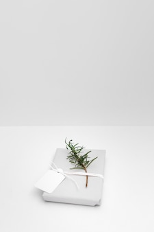 Twig and blank tag tied with wrapped gift box against white backdrop