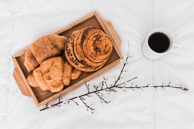Ramoscello vicino a caffè e panini