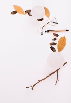 Twig near foliage and eyeglasses