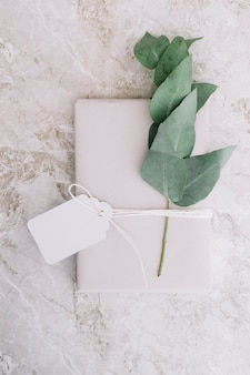 Twig and present wrapped with white paper tied with blank tag
