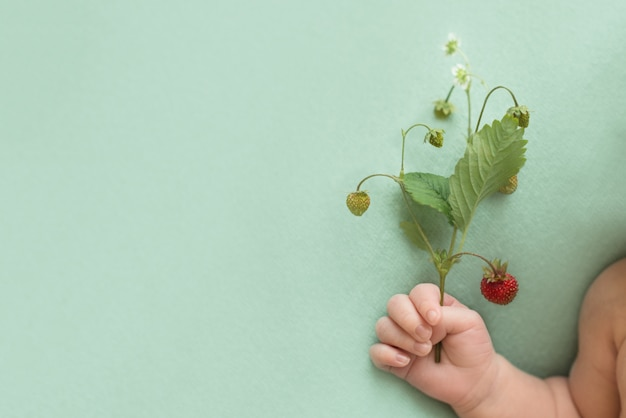 Twig with berries of red strawberries in the hand of a newborn baby on a turquoise background. summer harvest of vitamins. fruit allergy in children. copy space.