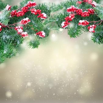 スノードロップと灰色のボケ背景の上の赤いベリーと緑の常緑樹の小枝と小枝