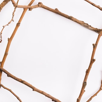 Twigs in form of frame