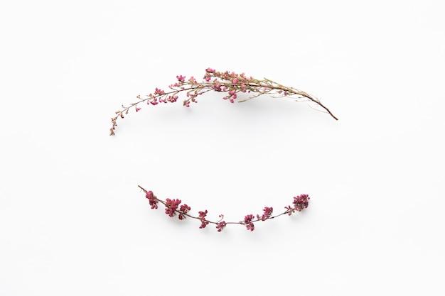 Twigs of wild flowers