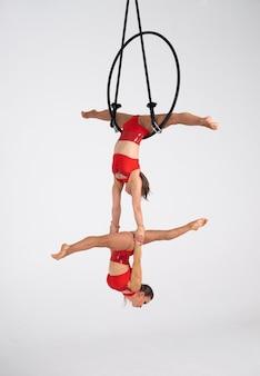 Артист цирка близнецов женский на воздушном обруче изолированном на белизне. очень гибкие и профессиональные гимнастки.