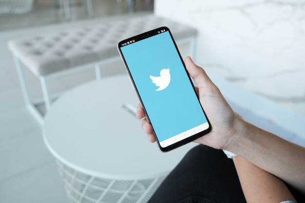 Женщин, занимающих смартфон с логотипом twitter на экране. twitter - это онлайн-сервис для социальных сетей для микроблогов и сетевого общения.