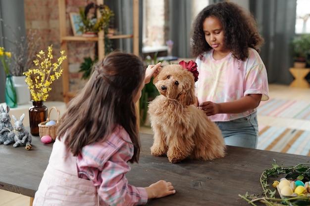 リビングルームの木製テーブルのそばに立ってイースターの準備をしながら、ふわふわのペットと遊ぶカジュアルウェアの2人の愛らしい異文化間の小さな女の子