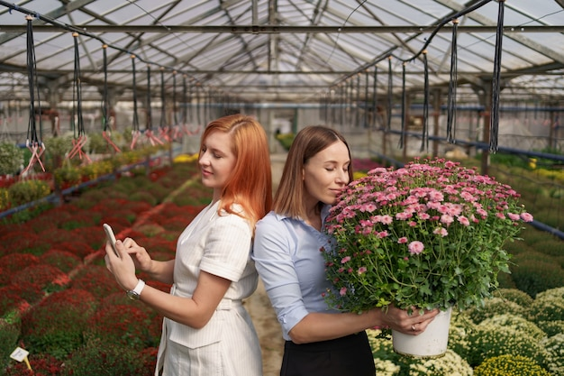 Two adorable ladies posing with a bunch of pink chrysanthemums in a beautiful blooming green house with glass roof.