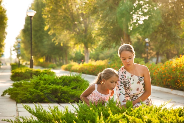 Two adorable sisters are looking at a large green bush and enjoying a warm summer sunny day in the beautiful park