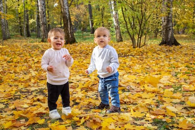 노란 잎에 가을 공원에서 두 사랑스러운 유아 소년과 소녀