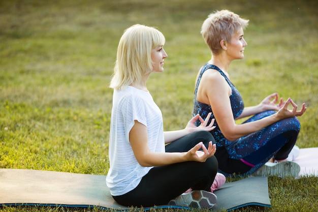 공원에서 여름에 야외에서 두 성인 여성 세 요가