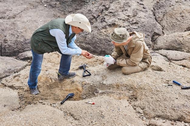 野外探検隊の2人の考古学者または古生物学者が古代の骨について話し合う