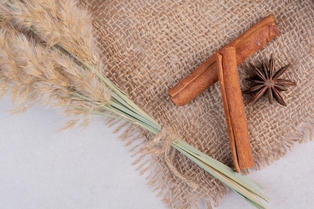 Two aroma cinnamon sticks with star anise on sackcloth. high quality photo