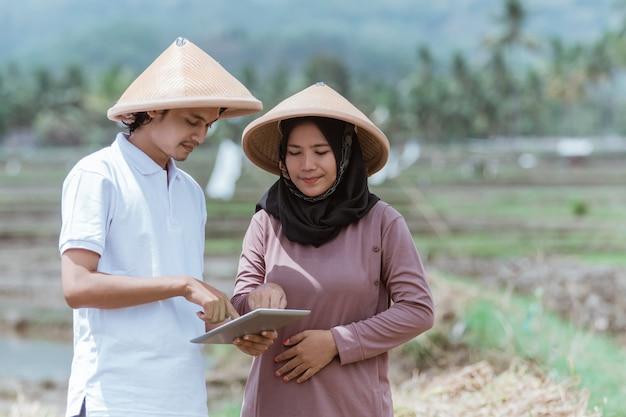 두 명의 아시아 농부가 태블릿을 사용하여 논에서 벼 수확량을 계산했습니다.
