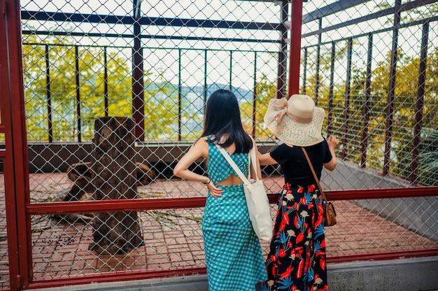 2人のアジア人観光客が動物園やサファリパークで動物と一緒にcageに立っています。