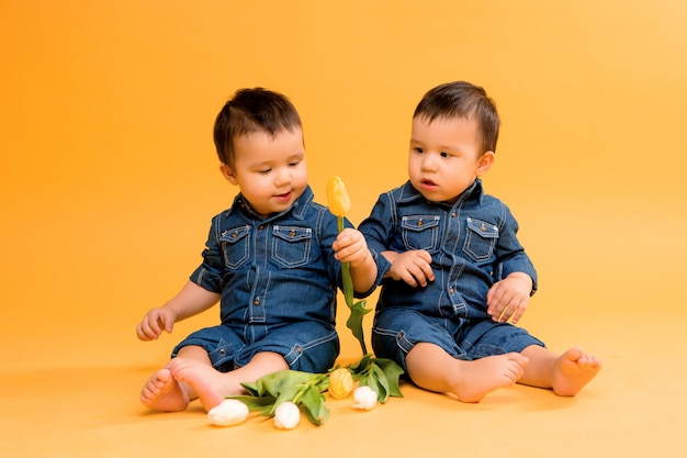 Two baby boy twins with flowers on yellow