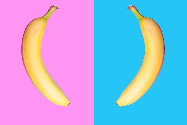 두 개의 색된 배경에 서로 마주보고 있는 두 개의 바나나. 플랫 스타일