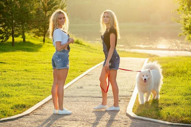 デニムのオーバーオールを着た2人の美しく魅力的な金髪の双子の女性が、公園で白いふわふわのサモエド犬と一緒に歩いています。