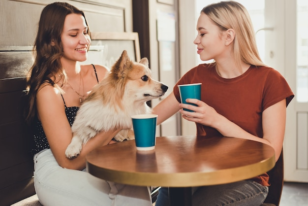 Two beautiful girls spend time in a cafe with a dog corgi breed