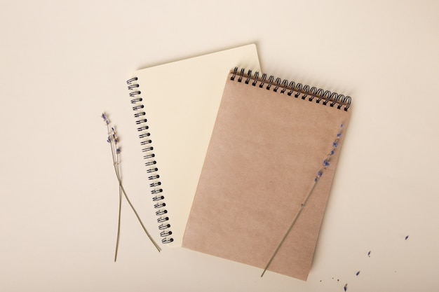 Two beautiful notebooks of beige color are beautifully laid out on a light background next to branch...