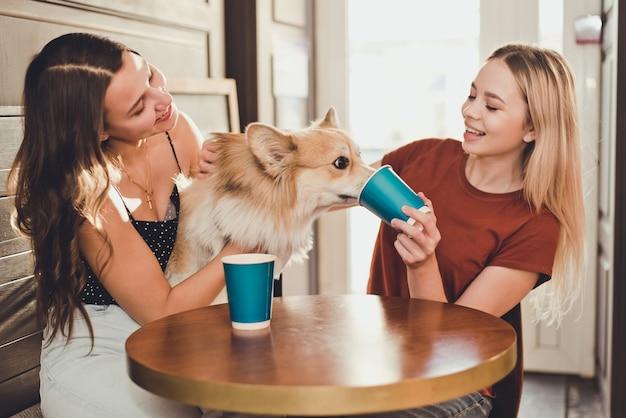 Two beautiful women drinking coffee with a corgi dog