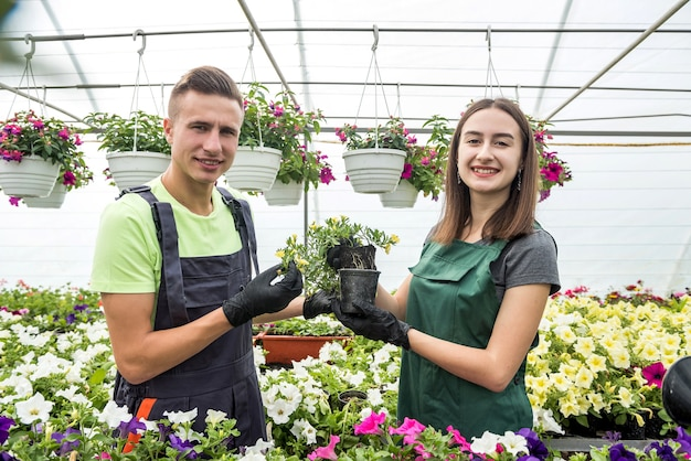 2人の美しい若い男性と女性が温室で働き、色とりどりの花の成長について話します。植物学