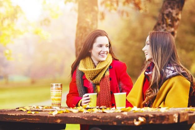 晴れた秋の日に話し、楽しんでいる2人の美しい若い女性