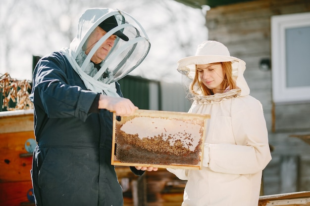 Two beekeepers working in apiary. working in coverall equipment.