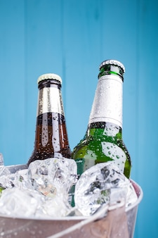 Two beer bottles inside ice bucket